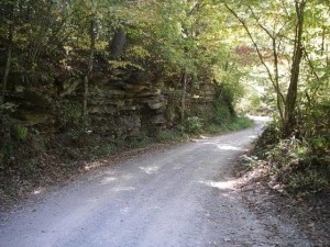 Back road inside the Catoosa WMA