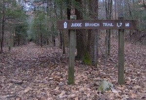 Judge Branch Trail at Frozen Head State Park, Wartburg, TN / Morgan County
