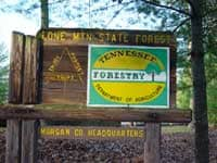 Lone Mountain State Forest